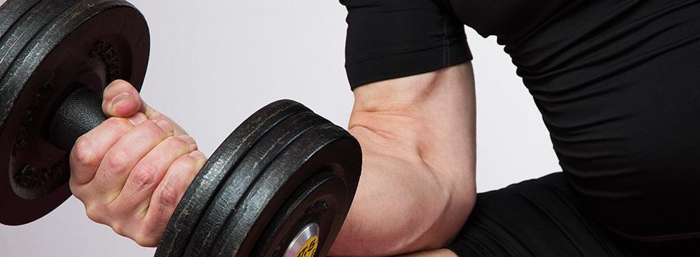 knochenmuskelgewicht